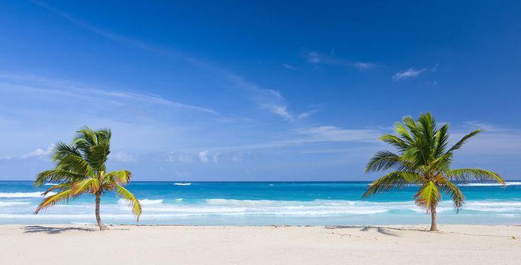 Verbringe mit dem Ferien Deal von Voyage Privé 7 bis 12 Nächte im 5-Sterne Hotel Dreams Palm Beach Punta Cana. Im Preis ab 1'399.- sind die All-Inclusive Verpflegung sowie der Flug inbegriffen.  Buche hier den Ferien Deal: https://www.ich-brauche-ferien.ch/ferien-deal-punta-cana-mit-hotel-und-flug-fuer-1399/