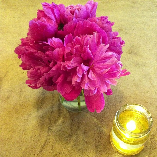 Bright Peonies and flickering light from my DIY oil lamp on a stormy day