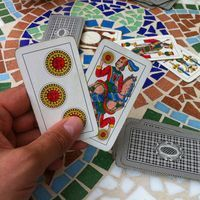 Briscola  is a Mediterranean trick-taking card game for two to six players played with a standard Italian 40-card deck