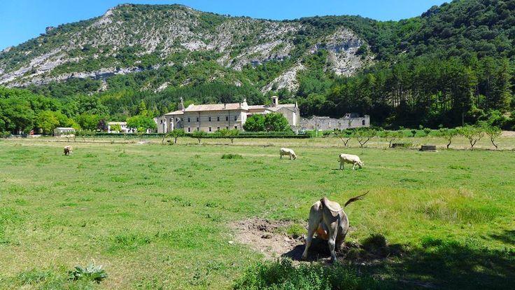 Buenos y perezosos días!  #monasteriodeirantzu #navarra #igersnavarra #igersdonostia #igersaquitaine #instatravel #travelgram #traveller #roadtrip #instagram #Iamatraveler #lonelyplanet #hallazgosemanal