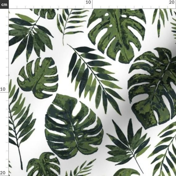 Forests Leaves Trees Tropical Leaves Forest Wallpaper Forest Illustration What is a tropical rainforest? pinterest