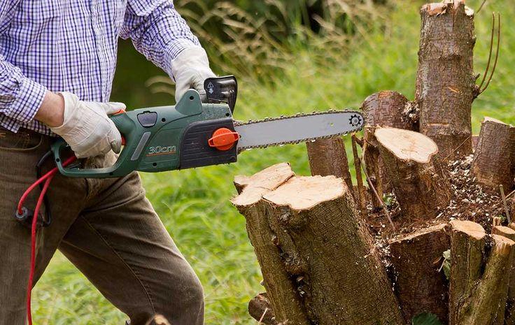 Détruire une souche :http://www.travauxbricolage.fr/travaux-exterieurs/jardin-paysagisme/detruire-souche/