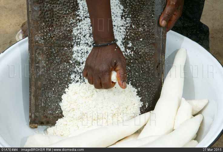 Woman grating maniok or cassava into flakes, Bamenda, Cameroon, Africa - stock photo