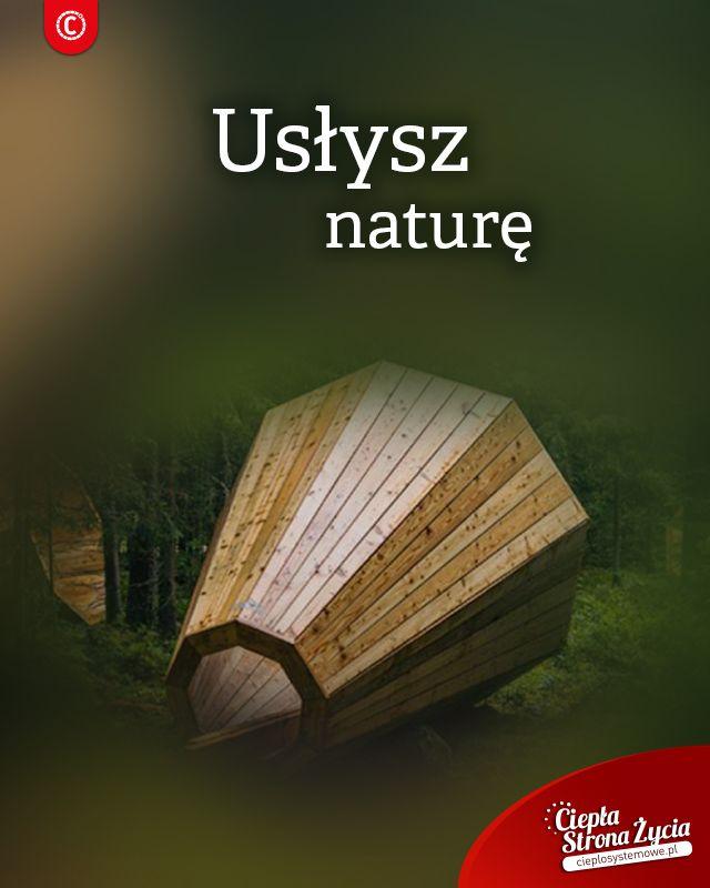 Jesień pełną parą! Drzewa przybierają przyjemne barwy, liście powoli opadają. Jesienna aura zachęca do wybrania się  na spacer do lasu, ale ręka w górę kto w lesie na spacerze tej jesieni już był? No właśnie… Estońscy studenci chcąc przyciągnąć mieszkańców do borów i lasów, zajmujących ponad połowę powierzchni kraju stworzyli trzy drewniane, trzymetrowe instalacje, w kształcie megafonów, które mają wzmacniać dźwięki lasu. Ustawione są względem siebie w taki sposób, by stojąc pomiędzy nimi…