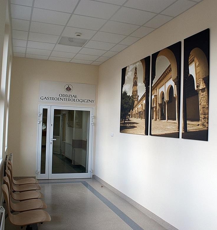 Oddział Gastroenterologiczny - Szpital Zakonu Bonifratrów w Katowicach - wejście na oddział -   całkowite zakończenie prac remontowych - czerwiec 2012 roku