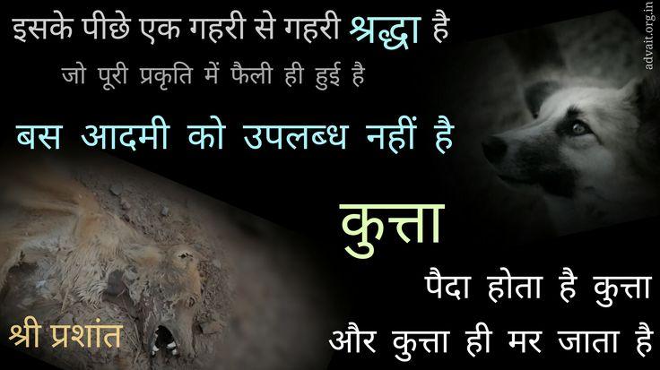 इसके पीछे एक गहरी से गहरी श्रद्धा है जो पूरे प्रकृति में फैली हुई है| बस आदमी को उपलब्ध नहीं है| कुत्ता पैदा होता है कुत्ता और कुत्ता ही मर जाता है|-श्री प्रशांत #ShriPrashant #Advait #man #universe #nature #faith Read at:- prashantadvait.com Watch at:- www.youtube.com/c/ShriPrashant Website:- www.advait.org.in Facebook:- www.facebook.com/prashant.advait LinkedIn:- www.linkedin.com/in/prashantadvait Twitter:- https://twitter.com/Prashant_Advait
