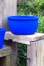 Buy International Yves Klein Blue Paint