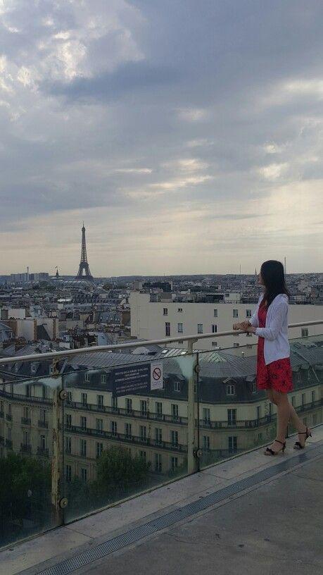 파리를 바라보며 2