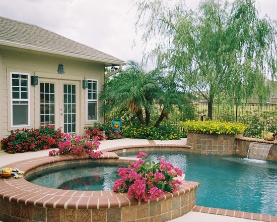 Spaces Pool In Small Yard Design, Pictures, Remodel, Decor and Ideas - page 18
