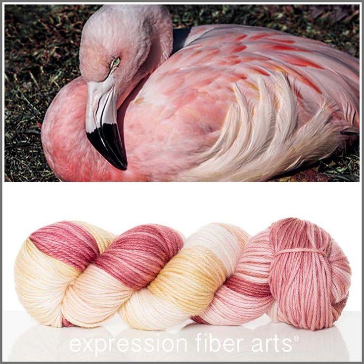 Expression Fiber Arts, Inc. - FLAMINGO SUPERWASH DEWY DK, $23.00 (http://www.expressionfiberarts.com/products/flamingo-superwash-dewy-dk.html)