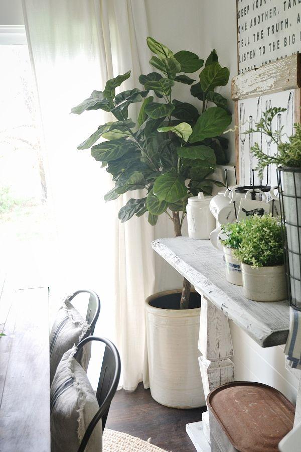 25 best ideas about fiddle leaf tree on pinterest fiddle leaf indoor trees and fiddle leaf. Black Bedroom Furniture Sets. Home Design Ideas