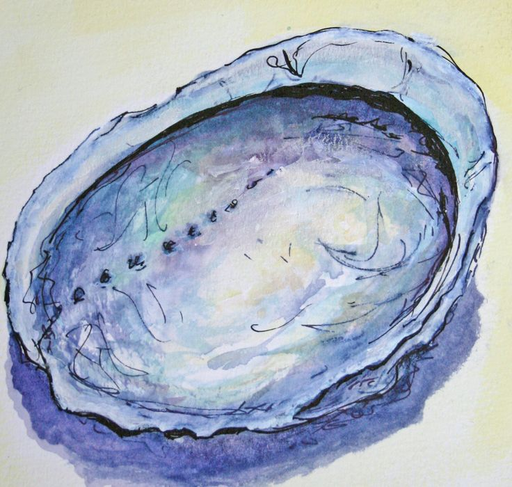 Paua shell watercolour and ink