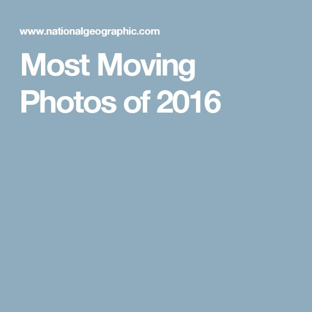 Most Moving Photos of 2016