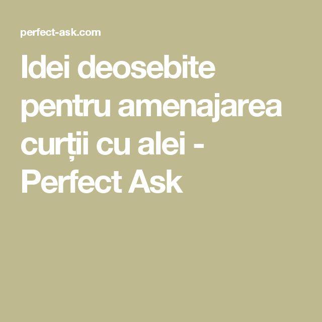 Idei deosebite pentru amenajarea curții cu alei - Perfect Ask