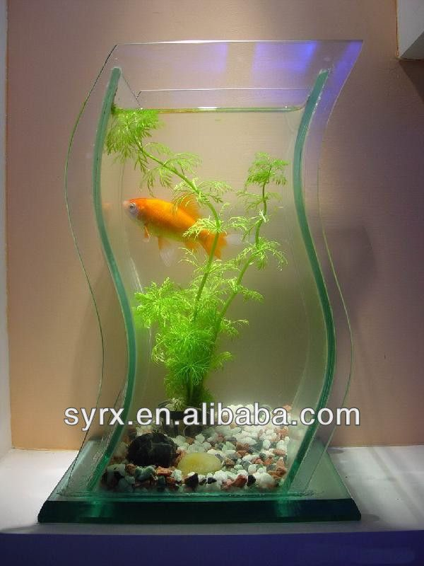 7 best mini fish aquarium tanks images on pinterest fish for Good fish for small tanks