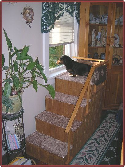 Dachshund Ramps (but could use the idea for any small dog
