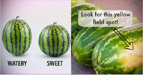 Tipy, jak vybrat ten nejsladší meloun