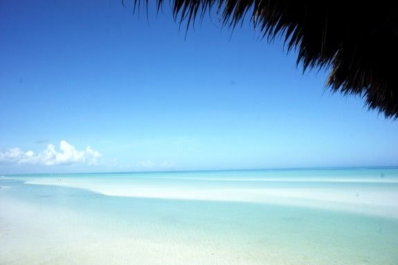 Isla Holbox: The Un-Cancun . I have been there and it is pure paradise...