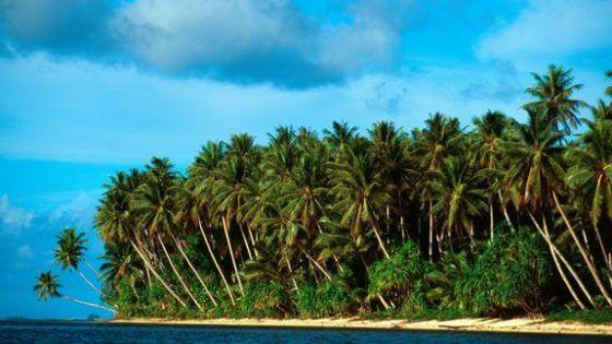 Australian man wins a tropical island in an online raffle