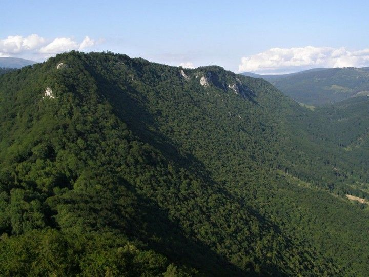 Forests of Muránska planina National Park, Slovakia