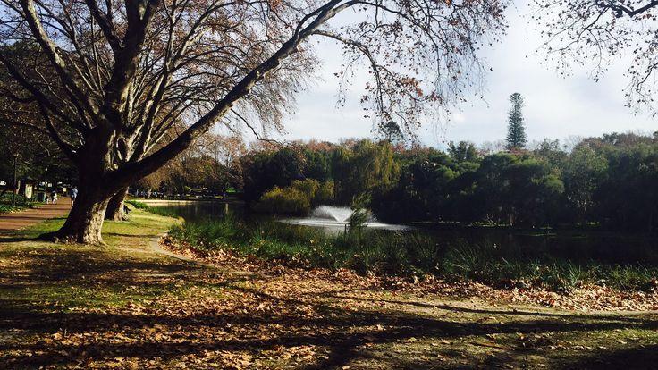 Hyde park on an autumn day (Western Australia)