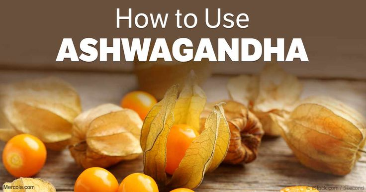 Emerging research is bolstering ashwagandha's reputation as a brain aid that may boost memory and cognitive function. http://articles.mercola.com/sites/articles/archive/2017/05/11/ashwagandha-improves-memory-cognitive-function.aspx