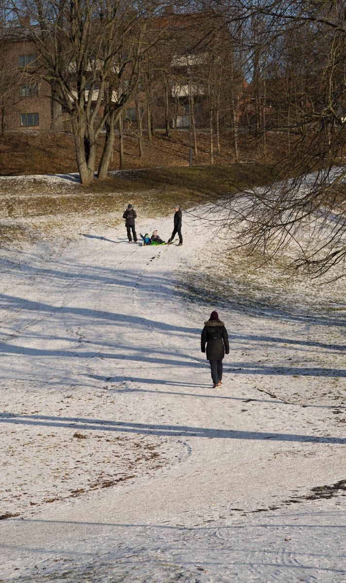 Tøyenparken in winter