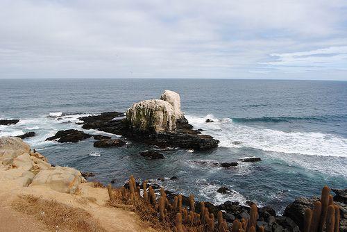 Punta de Lobos, Chile - Cool spot for surfing