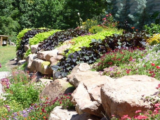 creating beauty and structure with a rock wall garden - Rock Wall Garden Designs