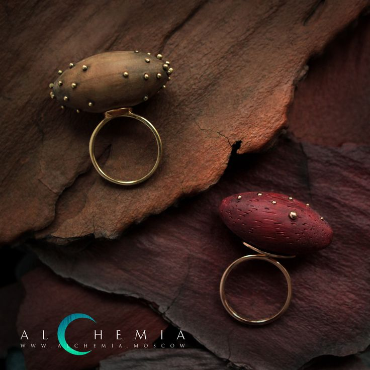 The Nut ring.White or yellow gold 750 with the element of the precious wood. Handmade by Alchemia Jewellery.