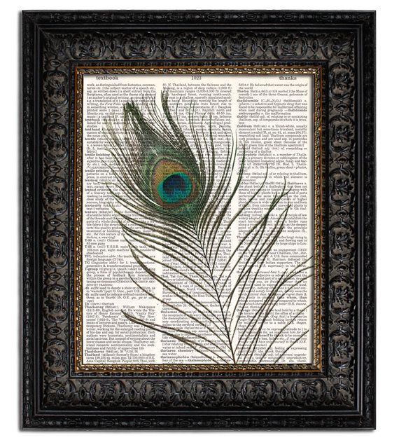 Going to frame a peacock feather like this except on teal paper instead of newsprint and hang it in my bathroom with a dark brown frame