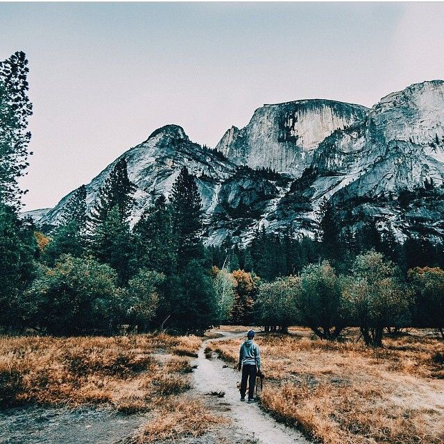 wander a little more in 2018