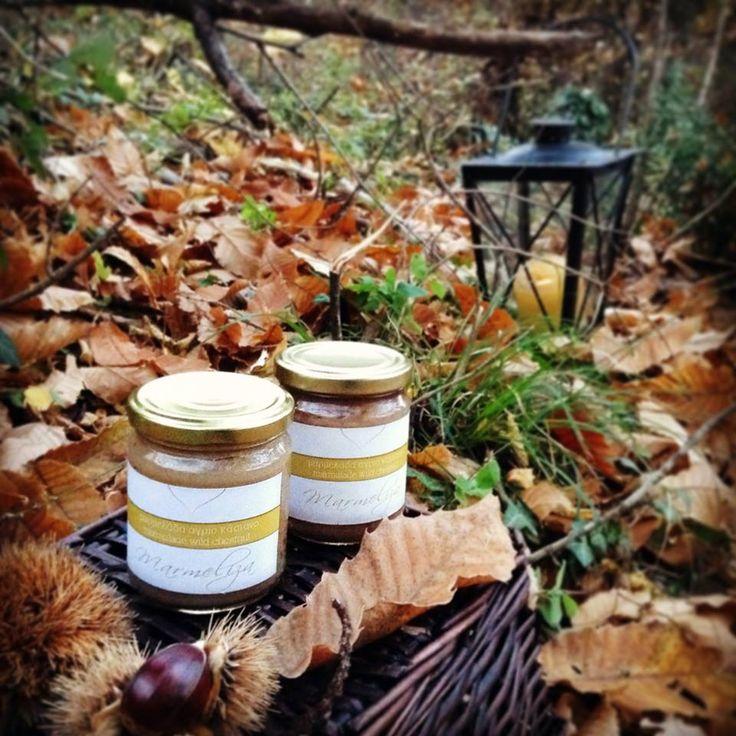 One of the favorite winter flavor is chestnut. Lets try wild chestnut jam... So tasteful.