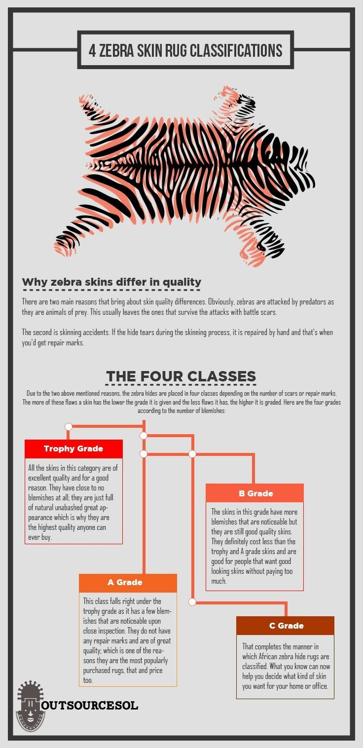 Interior Design Tips: 4 Zebra Skin Rug Classifications you should know and how to pick the best rug to better suit your Interior design project. Visit our site for more info. #interior #interiordesign #decor #homedesign #interiordecor #infographic #homedecor #interiordecorating #homdesign
