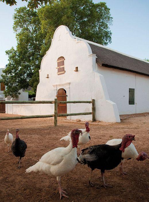 17 Best Images About Cape Dutch Architecture On Pinterest