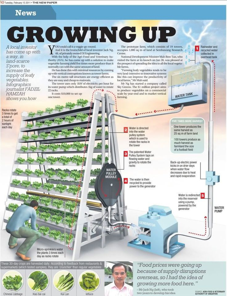 Aquaponics System - the skys the limit for singapores first vertical farm www.core77.com/... Break-Through Organic Gardening Secret Grows You Up To 10 Times The Plants, In Half The Time, With Healthier Plants, While the Fish Do All the Work... And Yet... Your Plants Grow Abundantly, Taste Amazing, and Are Extremely Healthy