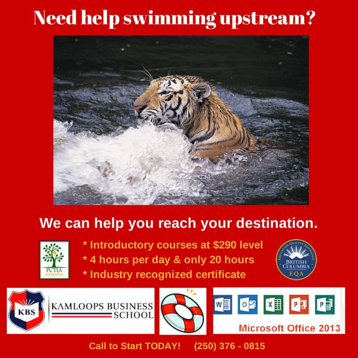 Need help swimming upstream? ...... We can help you reach your destination: * Our introductory computer courses are $290 including manual * These self-paced training can be accomplished in only 20 hours * Receive an industry recognized certificate * Software classes offered include: Microsoft Excel, Microsoft Word, Microsoft Access, Microsoft Outlook, Microsoft PowerPoint. * Accounting software for Sage and QuickBooks Call today (250) 376-0815 or email info@KamloopsBusinessSchool.com
