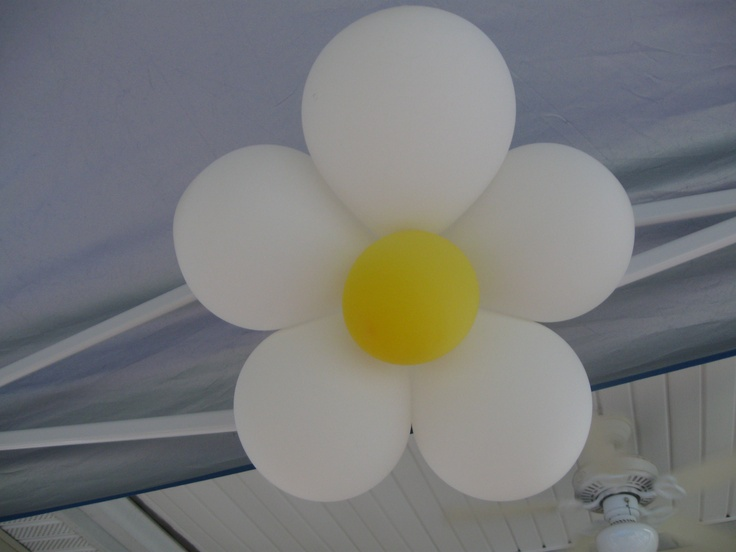 Made daisy balloons for my SIL daisy themed birthday party. Tutorial found here :http://www.onegoodthingbyjillee.com/2011/09/balloon-flower-party-decor.html