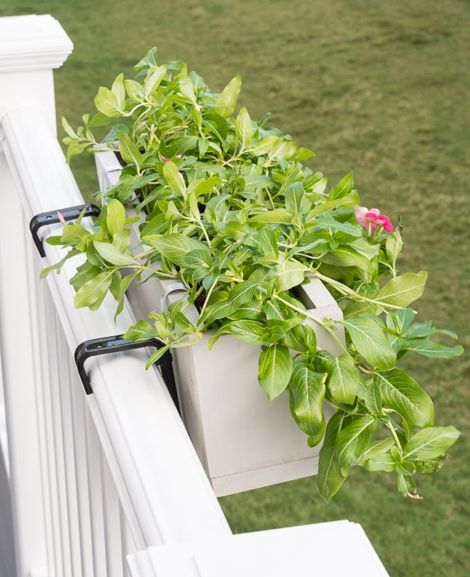 32 Best Deck Rail Planters Images On Pinterest: Best 25+ Railing Planters Ideas On Pinterest