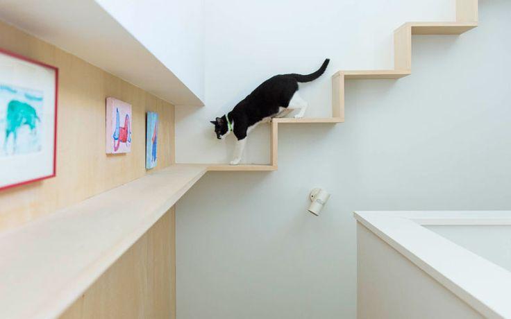 アイデア1.キャットウォーク【画像2】階段部分をゆっくりウォーキング(写真撮影:和田真典)