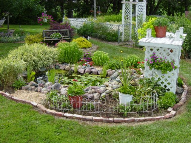 437 best images about small garden ponds on pinterest for Best aquatic plants for small ponds