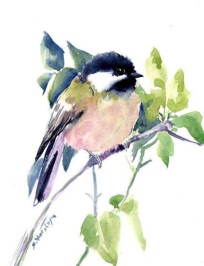 Chickadee Artwork Bird Art Watercolor Painting Bird Art Bird