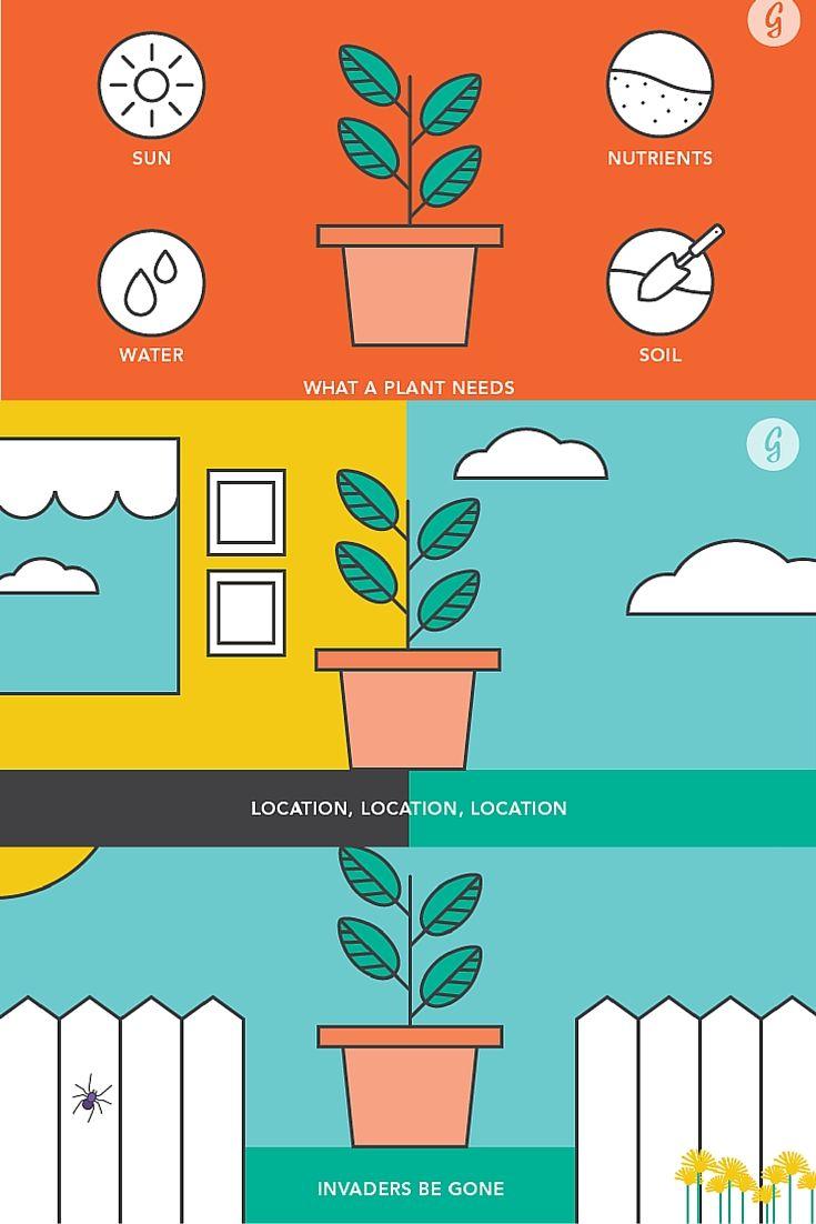 607 best going green images on pinterest gardening tips