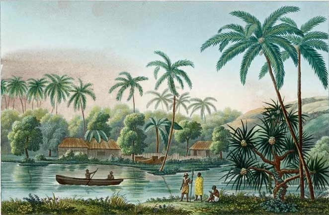 66 Best Redesign Tropical British Colonial Images On
