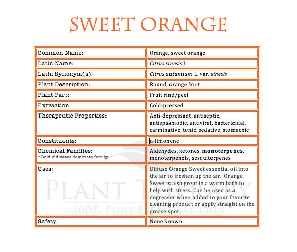 Orange essential oil is wonderful all year long. In the spring it reminds us of fresh new beginnings. In the summer, it is the quintessential sunshine scent. By fall, combined with cinnamon and clo...