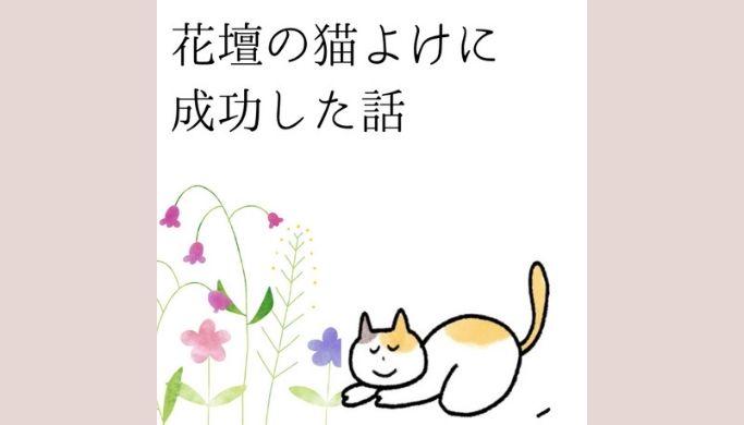 花壇が猫のトイレにされるようになってしまい 猫撃退のため 我が家で行った猫よけ対策とその効果ををご紹介していきます 我が家の場合は七味唐辛子が効果絶大でした その後一度もねこ被害にあっていません 2020 猫 トイレ 猫 花壇