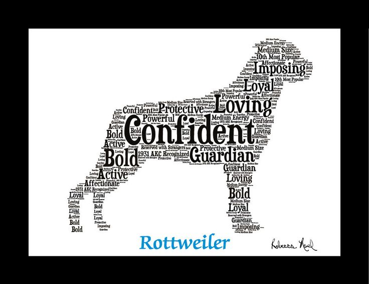 Are you searching the internet for: - Rottweiler Artwork? - Rottweiler Print? - Rottweiler Puppies Pictures? - Rottweiler Gift or Present? You came to the right place. You will find that this Rottweil