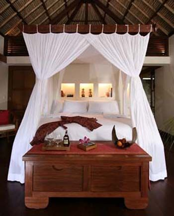 76 best african inspired images on pinterest africa for Tropical canopy bed