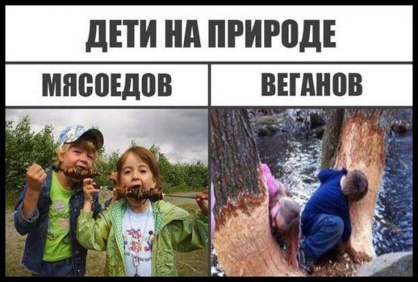 Smeshnye Memy Do Slez 39 Foto Shutniki Club Funny Puns Funny Jokes Humor
