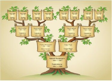 die besten 25 ahnentafel ideen auf pinterest stammbaum familie stammbaum und stammbaum f r. Black Bedroom Furniture Sets. Home Design Ideas